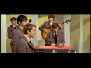 The Animals House of the Rising Sun 1964 HD