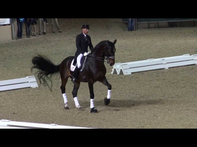 Ravel Steffen Peters - Their Last Freestyle - Night of Musical Freestyles 2013