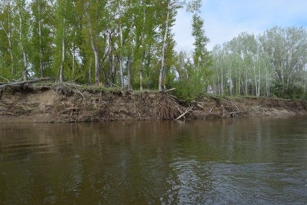 Последствия весеннего паводка