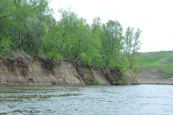 Крутой левый берег у Подмаячного затона