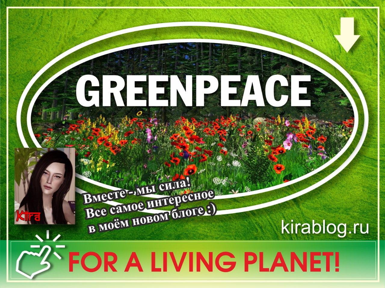 """проект """"Greenpeace"""" - Блог Киры ZACuOLoUkCU"""