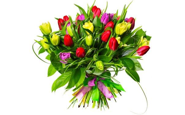 http://cs625429.vk.me/v625429348/60352/HbRKY8HmNDY.jpg