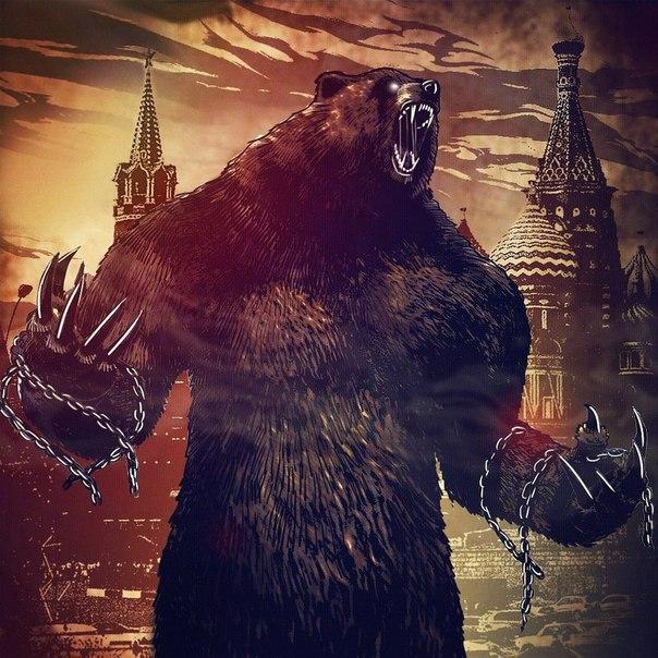 Картинки медведи крутые, видео