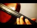 Cantarella(カンタレラ) - Kaito Hatsune Miku (Viola Cover -not Violin)