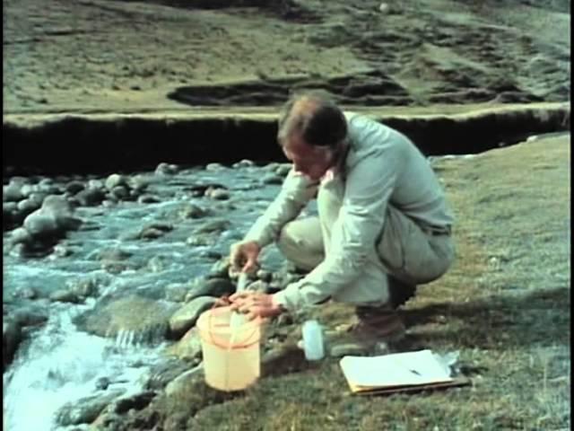 76 - Одиссея Жака Кусто - В дебрях Амазонки