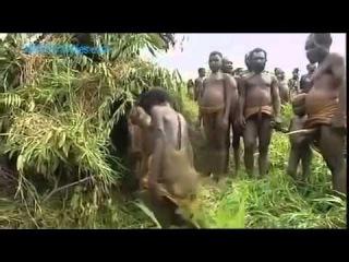 Дикие племена порно видео онлайн смотреть порно на RusPorn