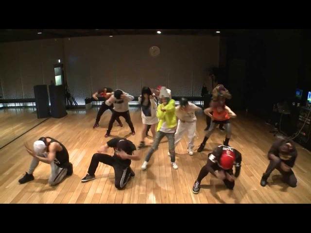 2NE1 - Come Back Home Dance Practice (Mirrored)