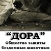 """ВГОО """"Общество защиты бездомных животных """"Дора"""""""