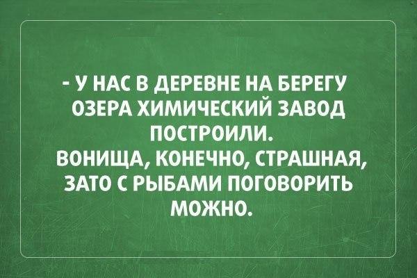 https://pp.vk.me/c625430/v625430156/845b/uz55Z94sR6g.jpg