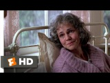 Life is a Box of Chocolates - Forrest Gump (79) Movie CLIP (1994) HD
