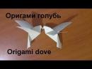 Оригами голубь Origami dove