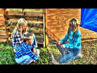 Pallet Recycling - Building A Free Chicken Pen - Part 1 | Homestead Kids