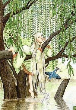 Древесница, дриада