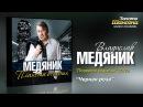 Владислав Медяник - Чёрная роза Audio