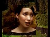Koop - Summer Sun (Official Music Video)