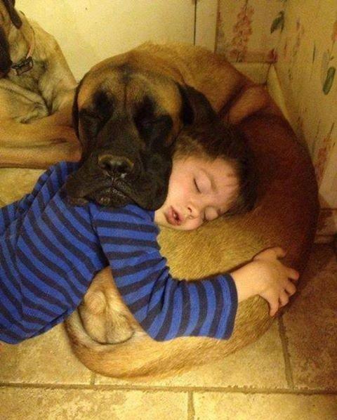 Взаимная подушка