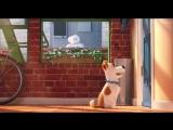 Тайная жизнь домашних животных | Дублированный тизер-трейлер