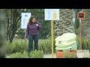 Terra Poo WiFi - Interactive (video) - Creativity Online