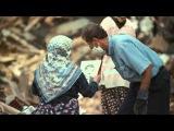 Документальный фильм Сила природы 2014 смотреть онлайн в хорошем качестве HD