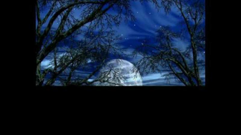 David Garrett - Clair de Lune
