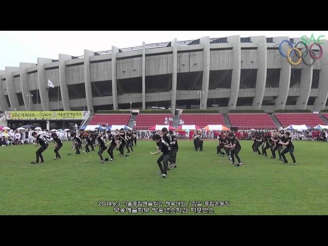 ▶ 1년을 기다렸다..!! 서울종합예술실용학교 서종예 칼군무 2014 플래시몹!! K-POP