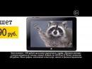 (2015) Билайн (планшет с большим экраном за 4990 руб.) - Енот