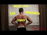 Видео Урок: Как накачать мышцы спины в домашних условиях