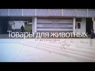 Зоомагазин в Снежинске