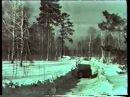 Лесная сказка. История Новосибирского Академгородка