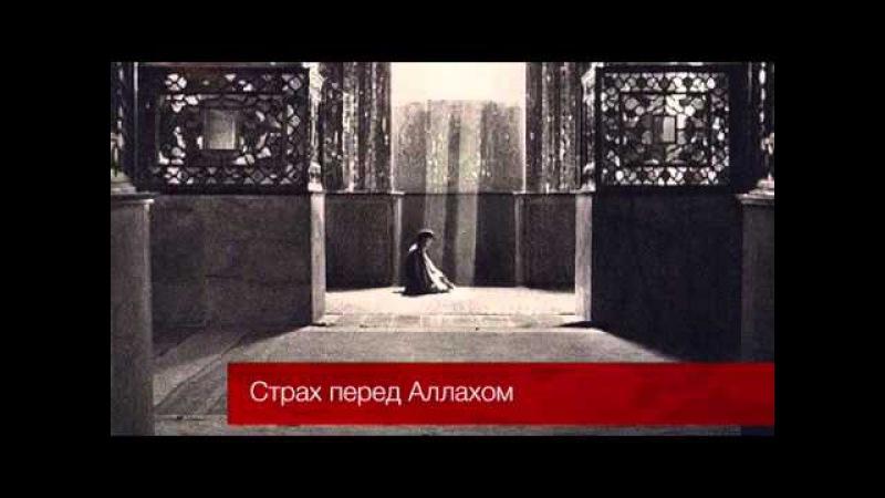 Страх перед Аллахом / Надир абу Халид