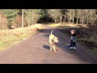 Ребенок выгуливал собаку, и вдруг... лужа!