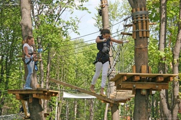 «Артек» решил открыть самый большой в России веревочный парк