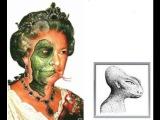 Миром правят рептилии. Раса таинственных драконов.