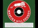Wareika Hill Sounds - Coconut head special