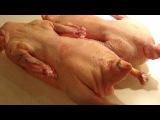 Как приготовить тушёнку из гуся (рецепт).