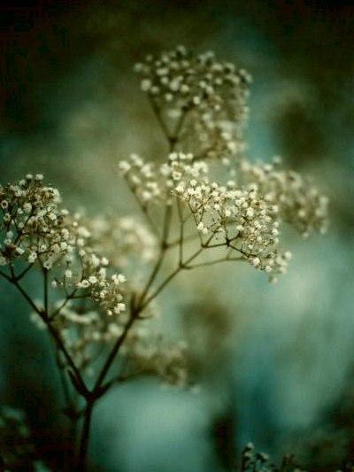 Жизнь дарит человеку в лучшем случае одно-единственное неповторимое мгновение, и секрет счастья в том, чтобы это мгновение повторялось как можно чаще.