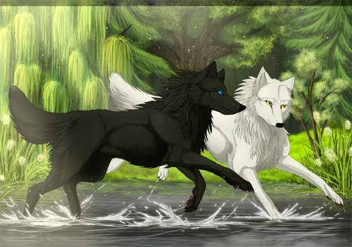 Волк как домашний пёс может ждать