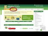 Как оплатить WebMoney через Сбербанк ОнЛайн