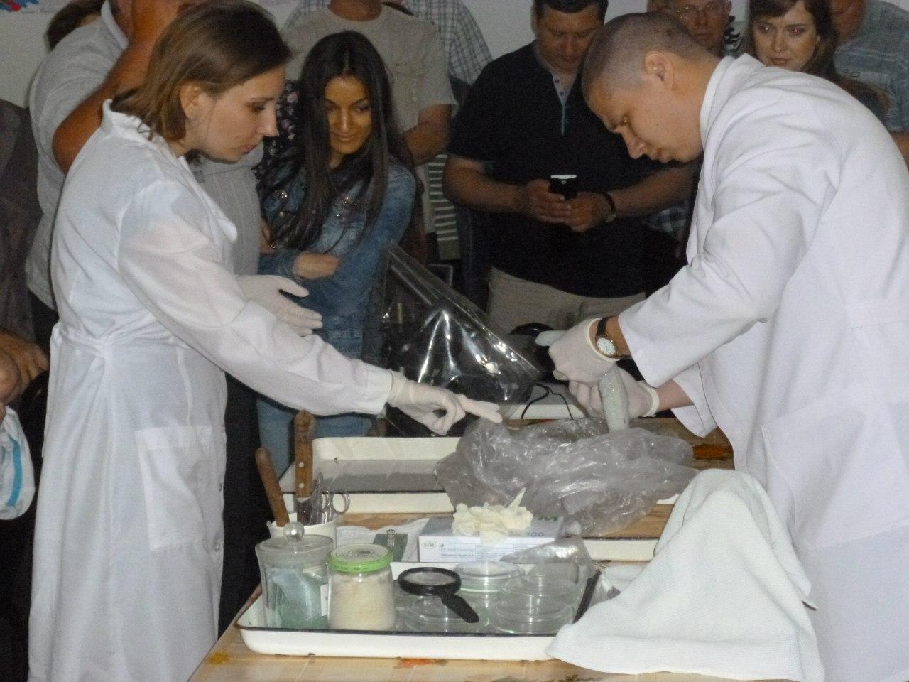 На Дону состоялось семинар-совещание ветврачей рыбоводных хозяйств и рыбоперерабатывающих предприятий