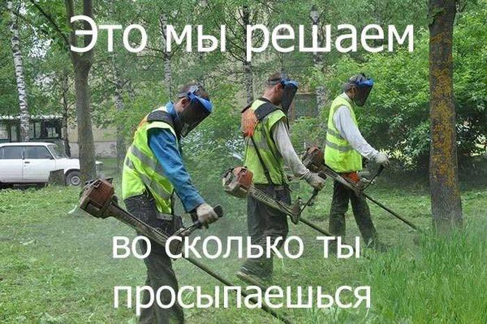 На таганрогских улицах продолжается покос травы