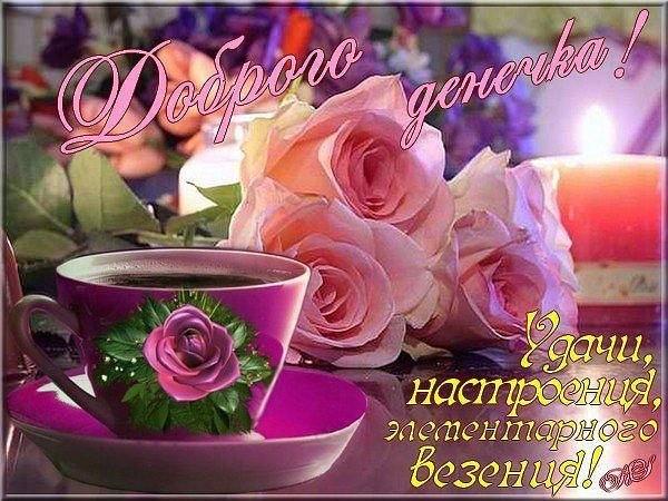 http://cs625522.vk.me/v625522343/42cda/EDAnMbaNjkk.jpg