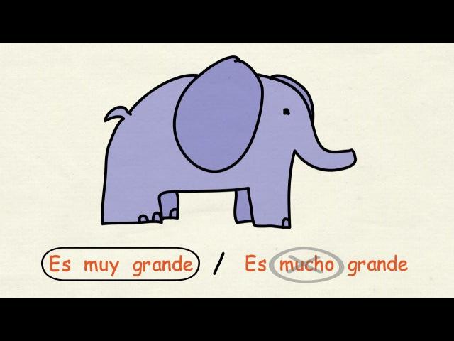 Aprender español: Muy, mucho y poco (nivel básico)