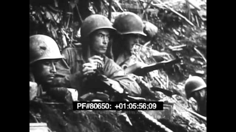 Bougainville - 1943-1945 WWII 80650