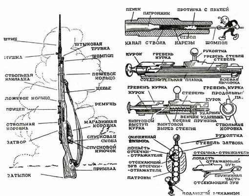 Схема винтовки Мосина для