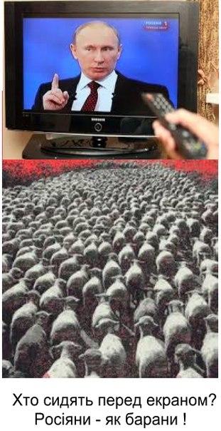 Террористы грубо нарушают Минские договоренности, - Тымчук заявляет о концентрации сил и техники противника на ряде направлений - Цензор.НЕТ 9244
