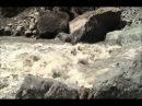 Georgia Inguri River