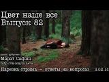 Цвет наше все...Выпуск 82... Camera Calibration (by М.Сафин)
