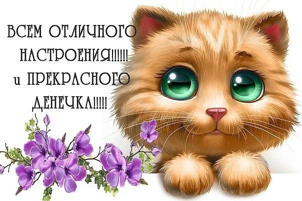 http://cs625525.vk.me/v625525072/46a41/zAzKvniNJqs.jpg