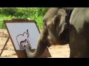 Слон, который рисует слона