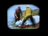 BORN FREE Documental Brutal caza rusa de ballenas descubierta
